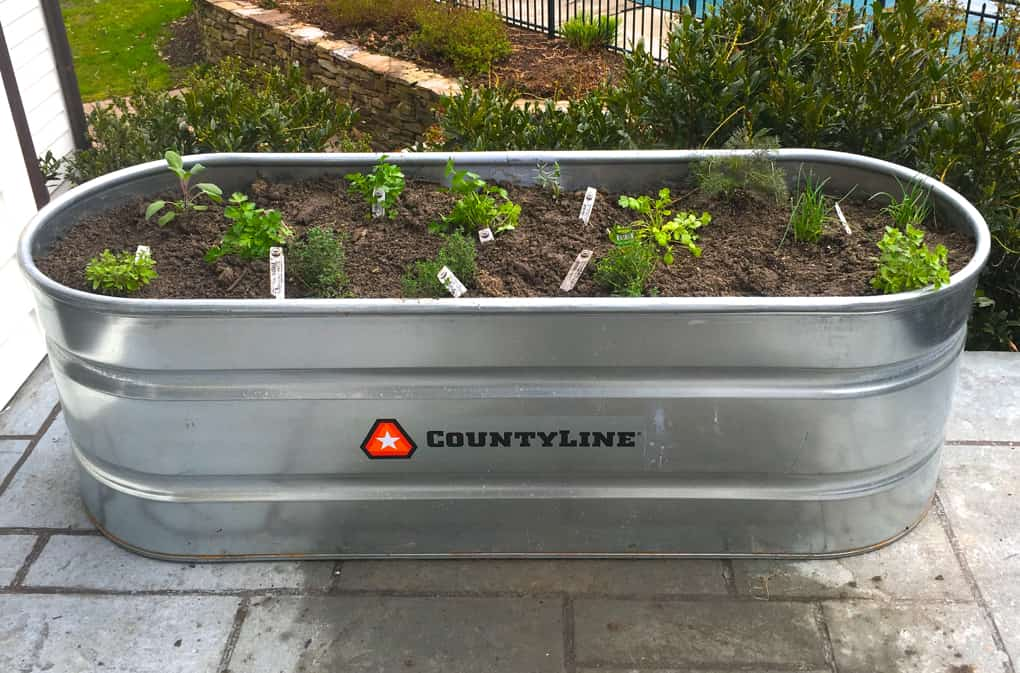 Container Gardens for Healthy Living