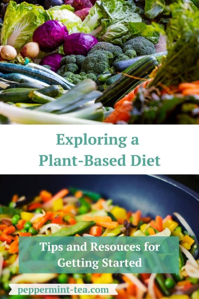 Exploring a Plant-Based Diet