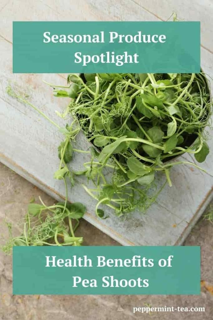 Seasonal Produce Spotlight: The Health Benefits of Pea Shoots